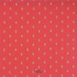 Tissu Viscose Brodé Motif Jaipur Fond Rouge