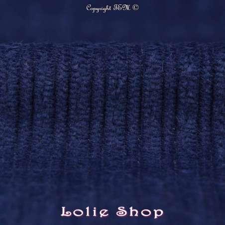 Tissu Velours Bleu